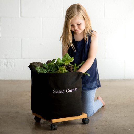 Girl Planting Salad Garden