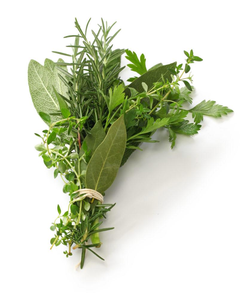 Bouquet of Herbs