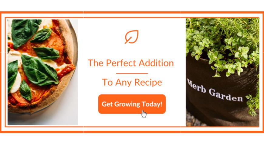 Spinach Flatbread Pesto Recipe