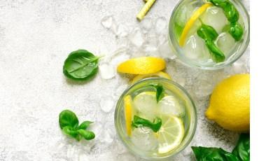 Garden Fresh Gin and Tonic