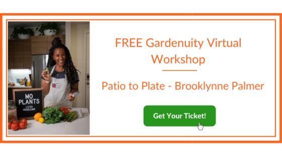 Brooklyn Palmer Virtual Workshop