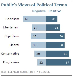 Public's View of Political Terms