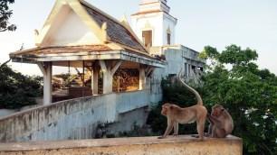 chrám Thammikaram Worawihan