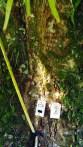 el. instalácia na strome