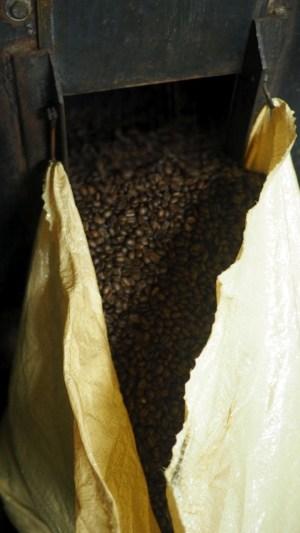 čerstvo upražená káva