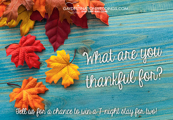 thanksgivingoffer-blog