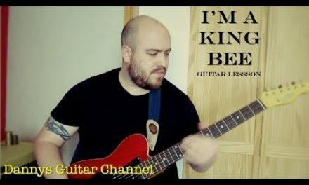 I'm a King Bee – Muddy Waters Version – Chicago Blues Guitar Lesson