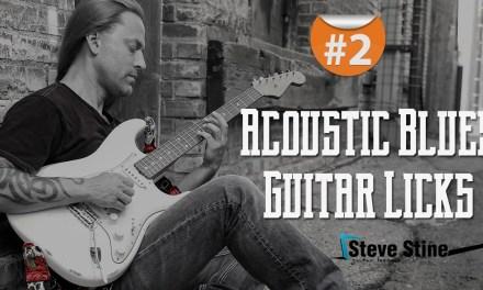 Steve Stine Guitar Lesson – Simple but Effective Acoustic Blues Guitar Licks part 2