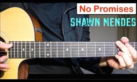 No Promises – Shawn Mendes | Guitar Lesson (Tutorial) How to play Chords