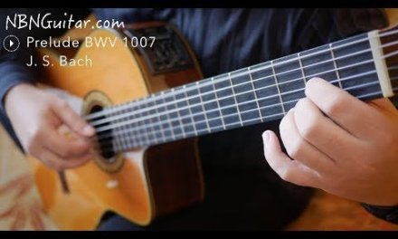 Shape Your Classical or Fingerstyle Fingernails Using This