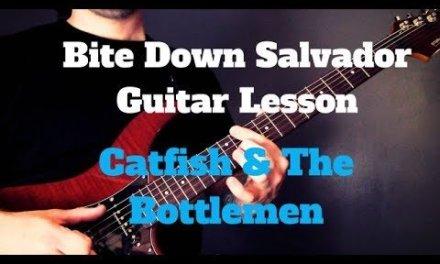 Catfish & The Bottlemen – Bite Down Salvador Guitar Lesson