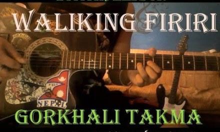 Walking Firiri Guitar Lesson    Tuitorial   – With Solo