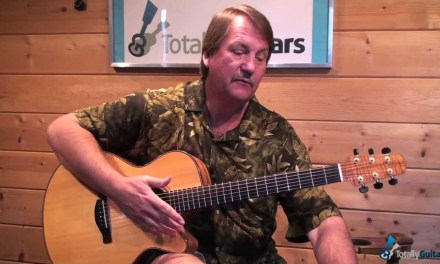 Last Train To Clarksville – Guitar Lesson Preview