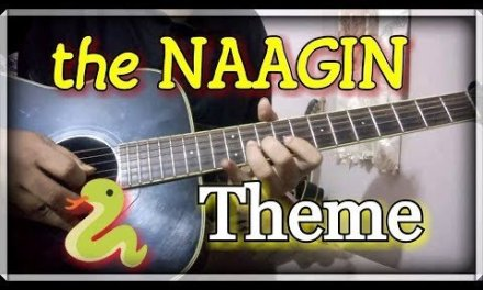 Best Performance Type Lead – The NAAGIN Theme | School/College Performance Guitar Lead