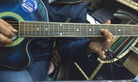 Basic Guitar Lesson For Beginners in HINDI – Part 2