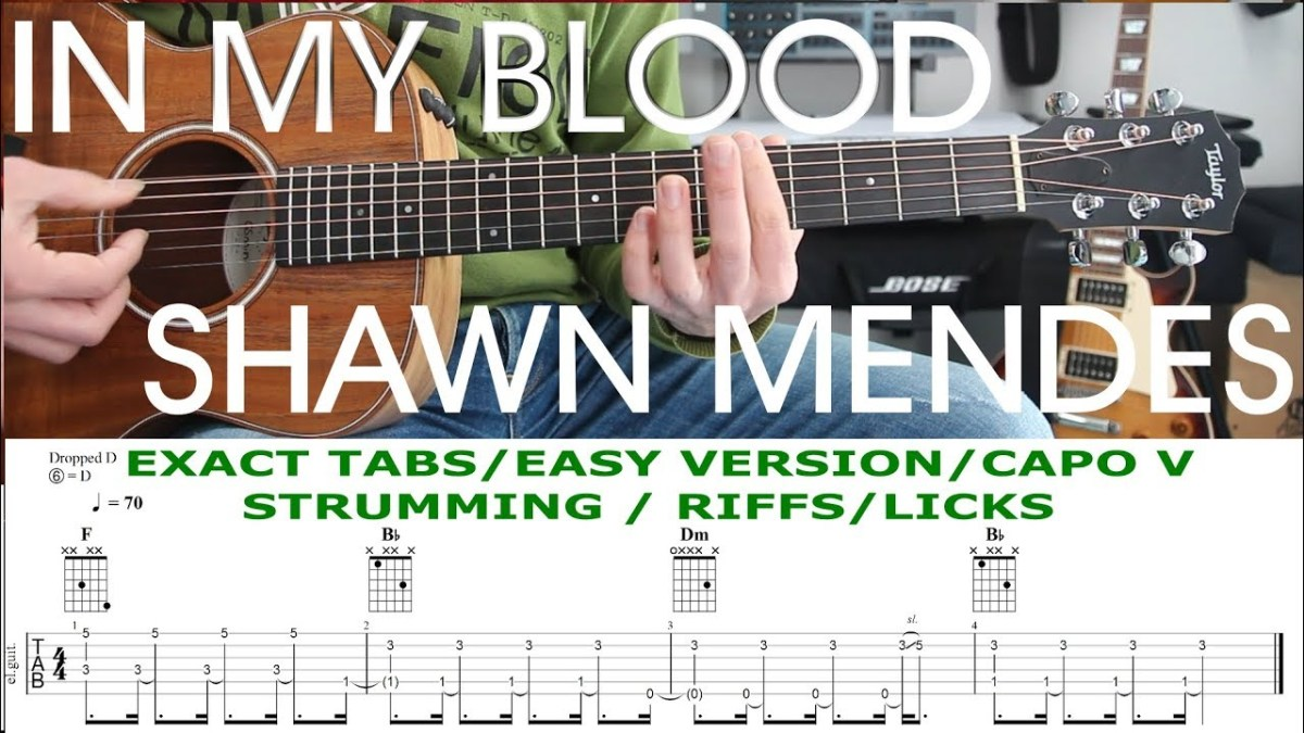 In My Blood Shawn Mendes Guitar Lesson Tutorial Tab Chords