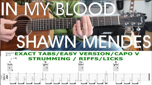 IN MY BLOOD, Shawn Mendes, Guitar Lesson, Tutorial, TAB, Chords ...