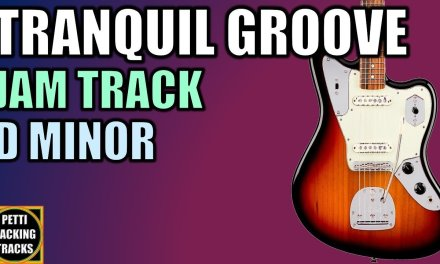 Tranquil Groove Guitar Backing Track Jam in D Minor
