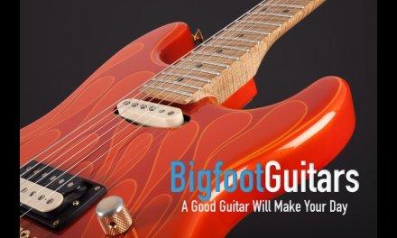 Wayne Guitars Rock Legend
