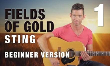 """Fields of Gold"" – Beginner Guitar Lesson – Part 1"