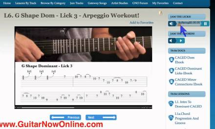 Lead Guitar Lessons – Learn Guitar Licks, Chords and Scales