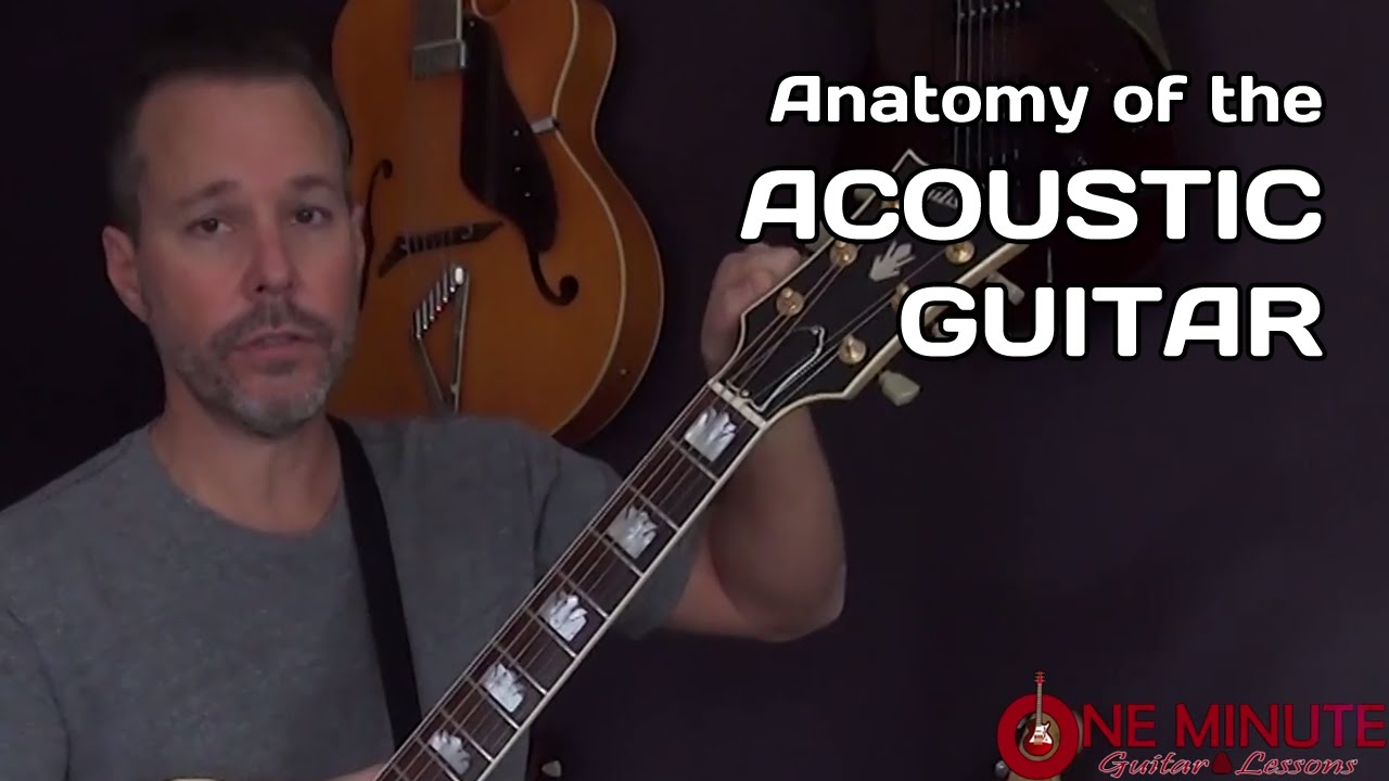 Anatomy Of The Acoustic Guitar Beginner Lesson The Glog