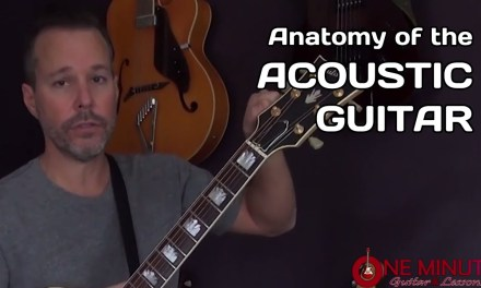 Anatomy of the Acoustic Guitar – Beginner Lesson