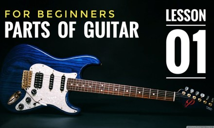 Basic Guitar Lesson 1 for Beginners in (Hindi ) | Easy beginners lessons by Guitar Lovers