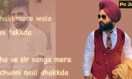 mere wala sardar remix   new remix dj song   dj song   full base dj song   lyric song