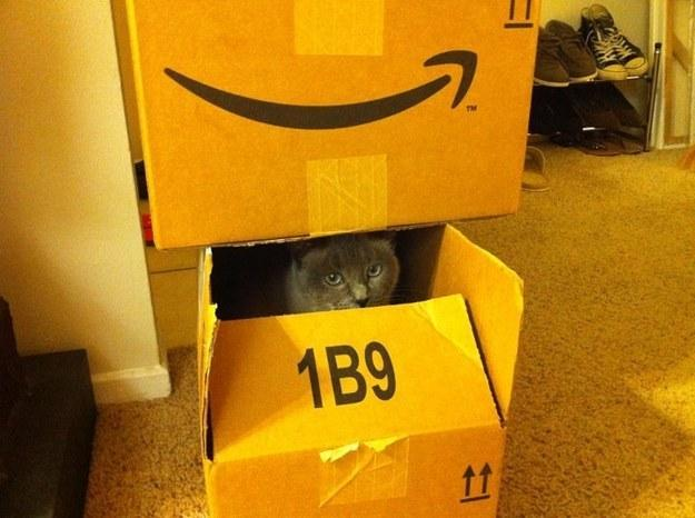 Would you live in an Amazon watched house?