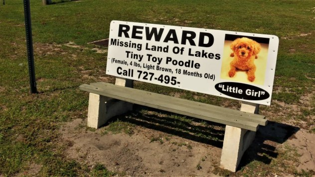 Scam targets distraught pet owners