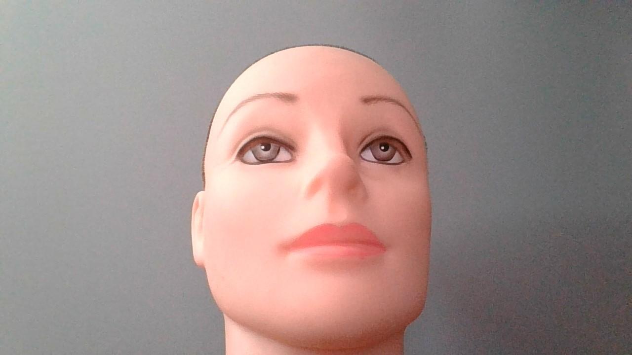 Qualität und Positionierung der Webcam: suboptimal