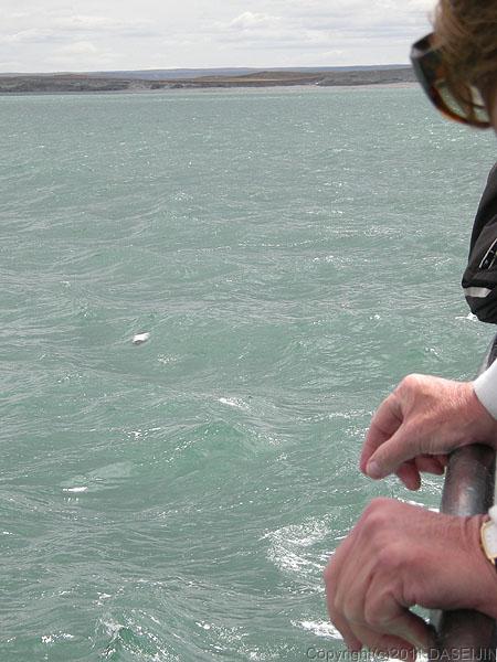 110105マゼラン海峡・何かが現われた?