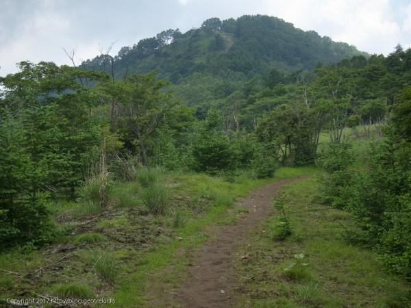 1707078 鷹ノ巣山は近い