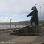 トレッキングを終え、再びプエルト・ナタレス~チリの旅(15)