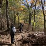 檜洞丸の秋~丹沢・檜洞丸