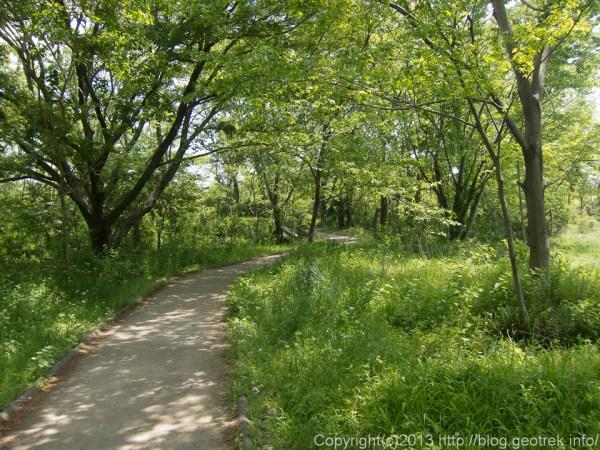 多摩川自然遊歩道