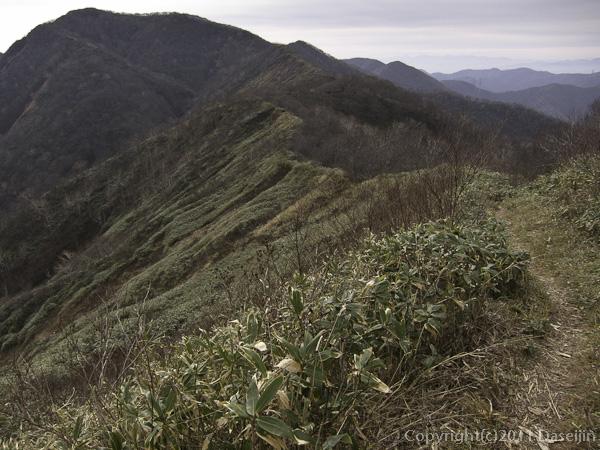 111105谷川岳・大源太山へ