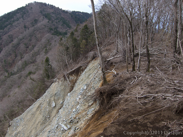 120407丹沢・雨山の崩壊地帯