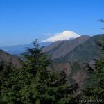 天気は爽快、足取りも軽い~塔ノ岳からシダンゴ山(1)