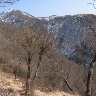 鍋割山への道から塔ノ岳