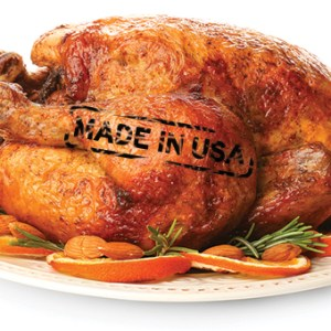 Thanksgiving: Made in the USA