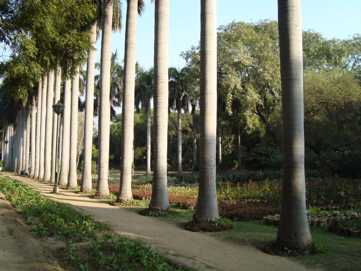 Lodhi Gardens best running places in delhi NCR