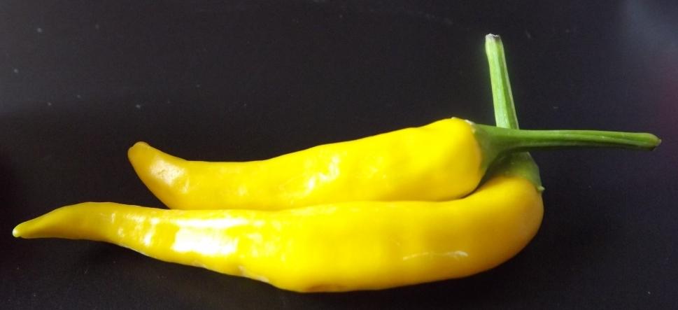 Peperoncino Hot Lemon