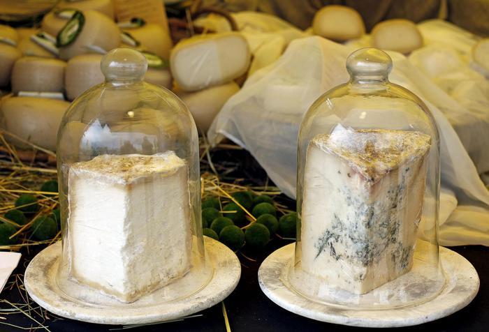 Da gennaio un bollino Ue segnala veri formaggi Dop e Igp
