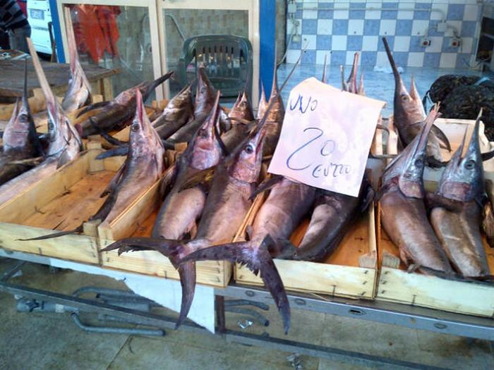 Pesce spada, in tavola dopo primo aprile