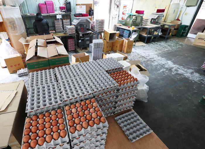 Carrefour Italia, stop a vendita uova da galline in gabbia
