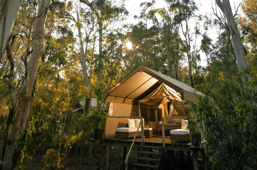 History of the Glamping Movement