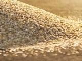 trocar a areia do filtro para piscina