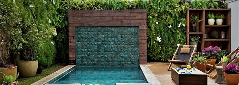 As melhores plantas para piscina, paisagismo para sua piscina.
